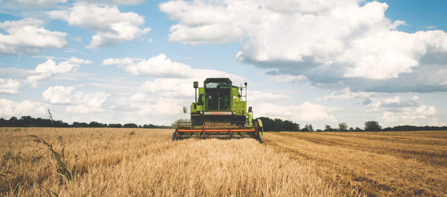 Agriculture : la balance commerciale tunisienne passe dans le vert !