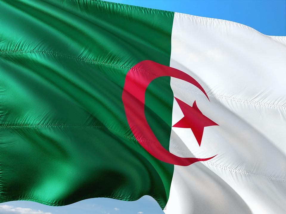 Algerie : de nouveaux ambassadeurs nommés dans plusieurs pays