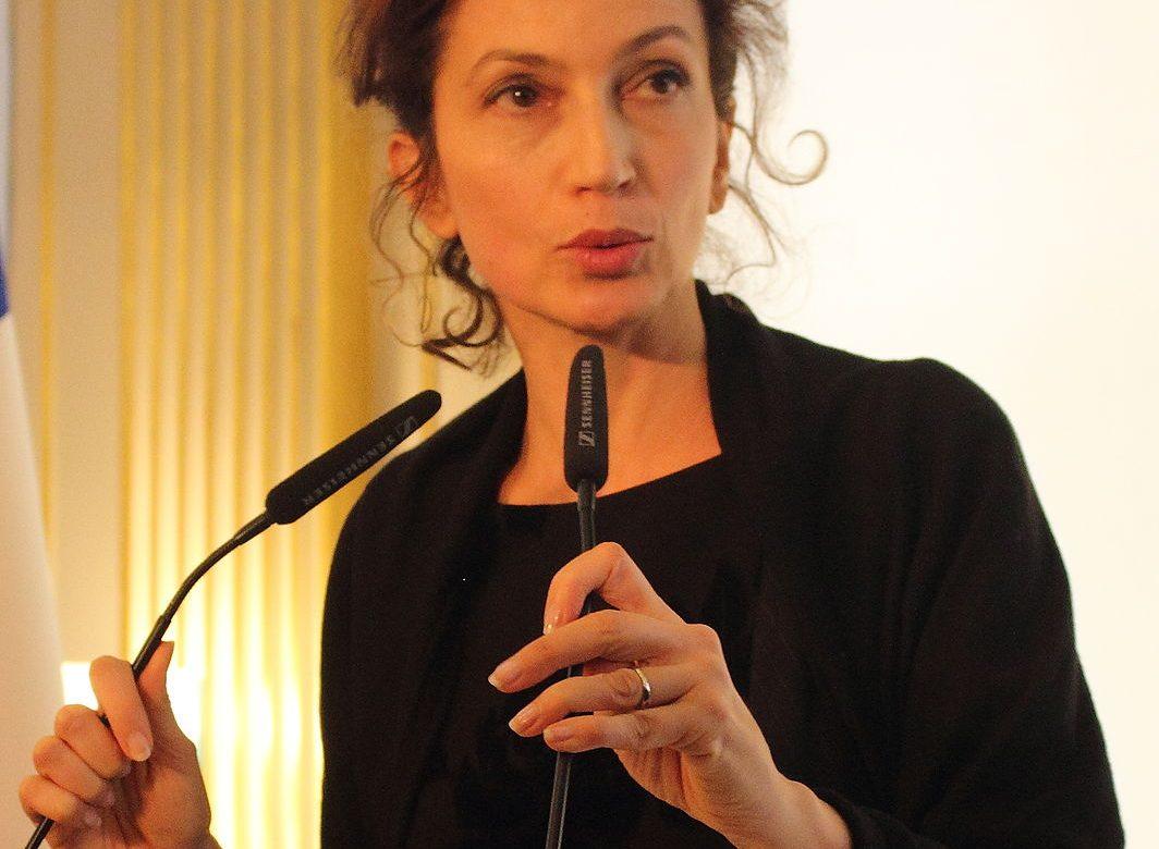 La culture au centre des échanges entre la France et la Tunisie