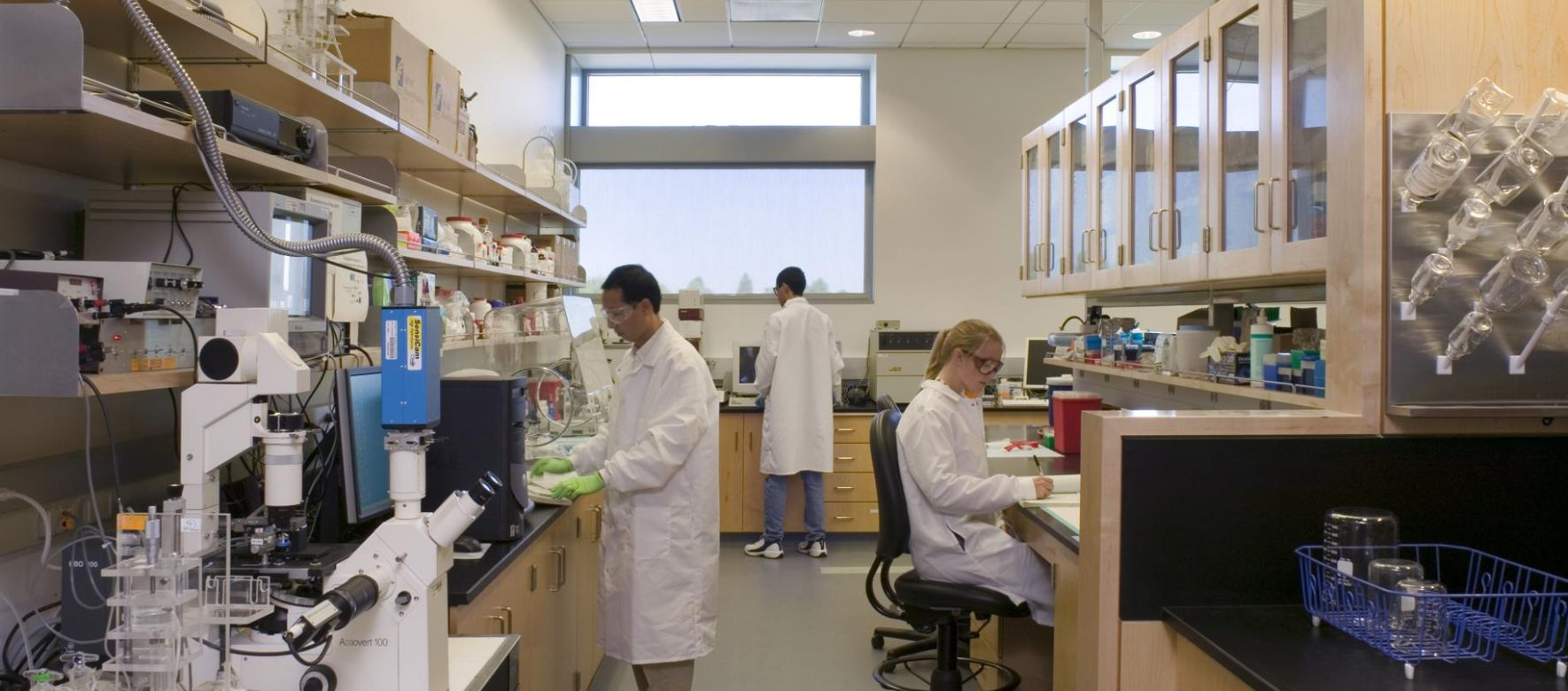 Israel and France are joining their R&D in Biomedical technology through the Eureka network 2