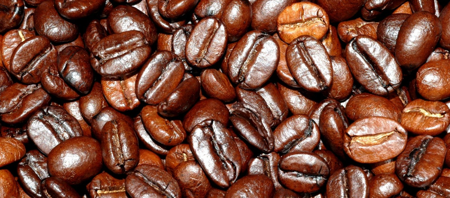 Le groupe égyptien Misr Cafe à la conquête des marchés africains