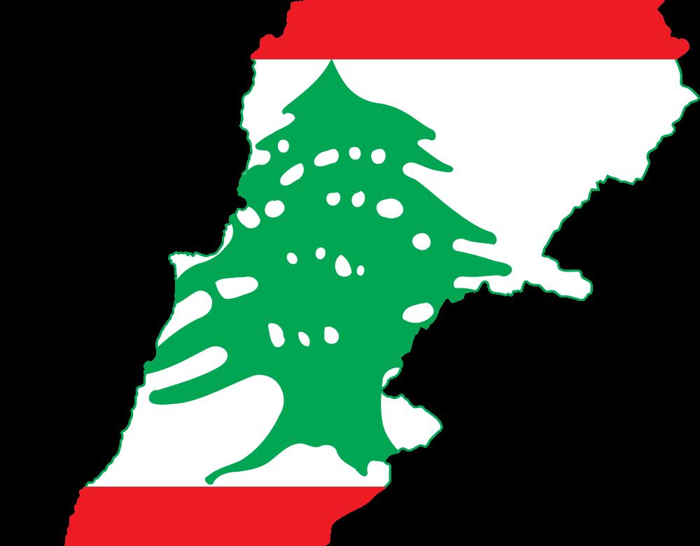 Cartographie de l'entrepreneuriat social au Liban