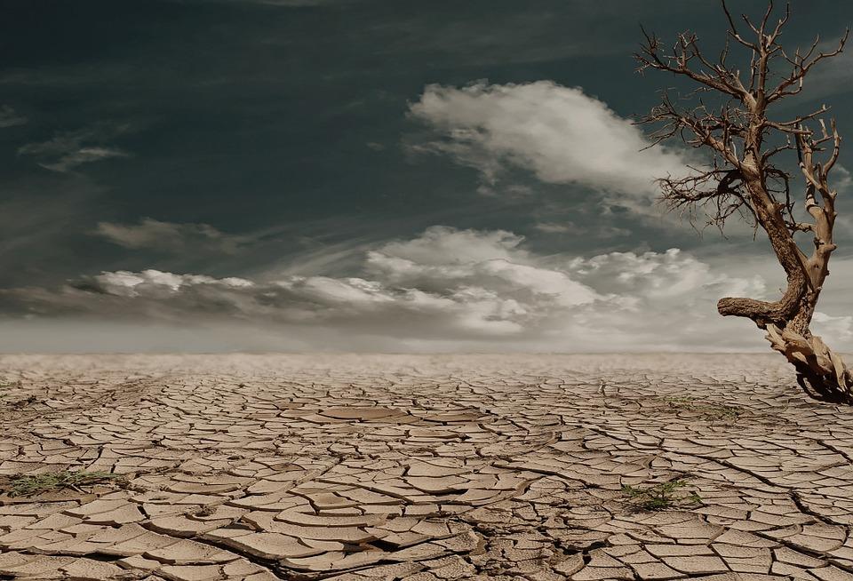 L'Afrique et le Moyen-Orient, premières victimes du réchauffement climatique ?