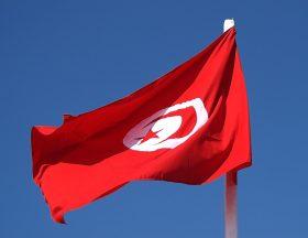 Ces startups tunisiennes qui montrent la voie