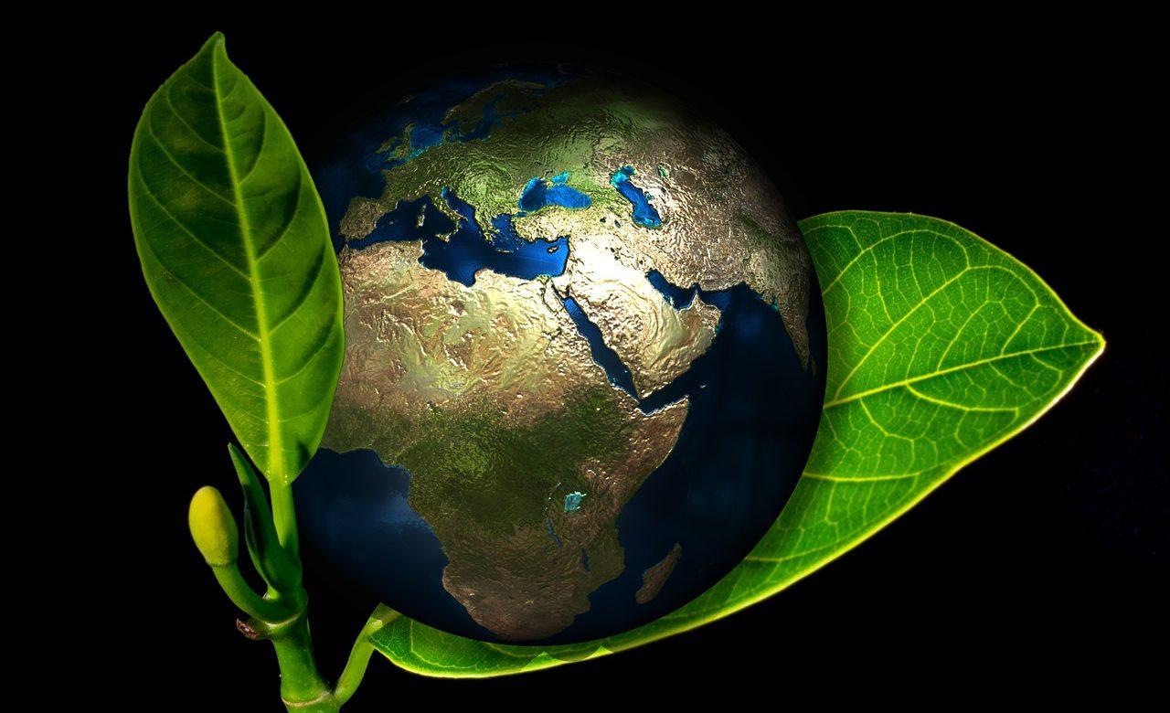 Afrique/Moyen-Orient : Comment atteindre les objectifs de développement durable ?