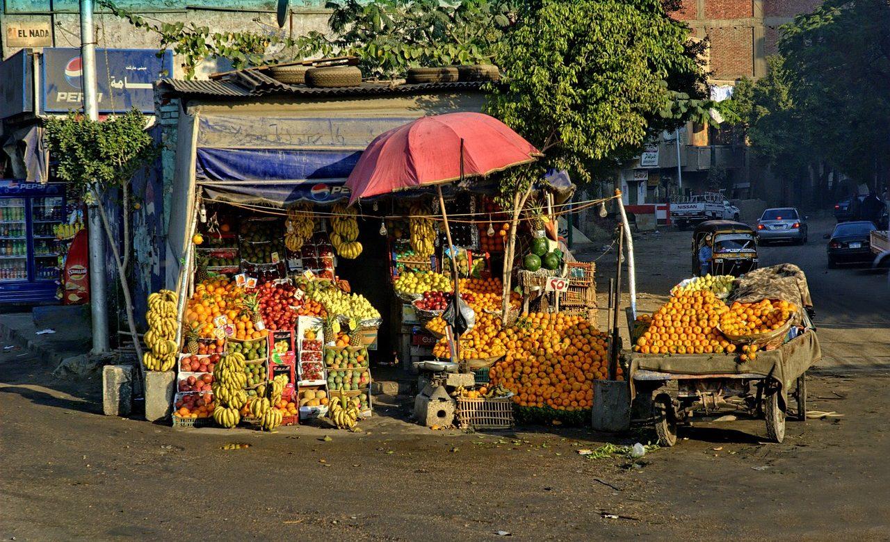 Egypte : l'exportation de produits agricoles vers l'Europe décolle