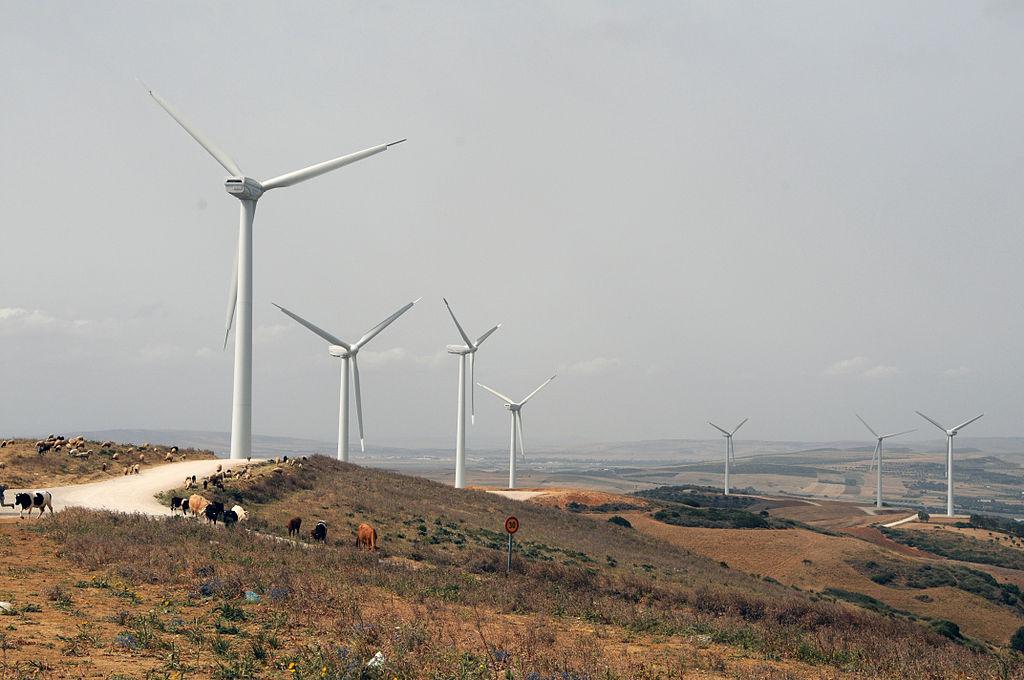 Nouveau partenariat italo-tunisien dans les énergies renouvelables
