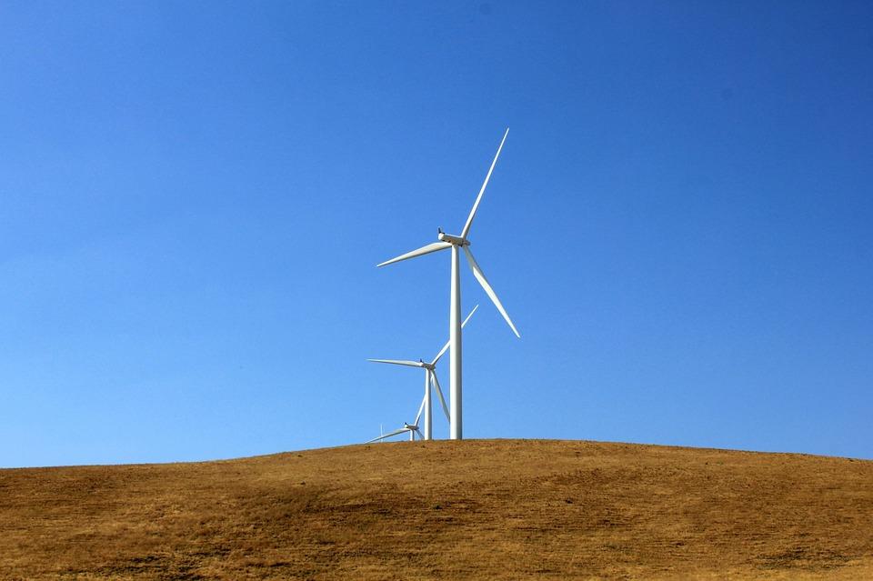 Une compagnie danoise en négociation avec l'Egypte pour un vaste projet éolien