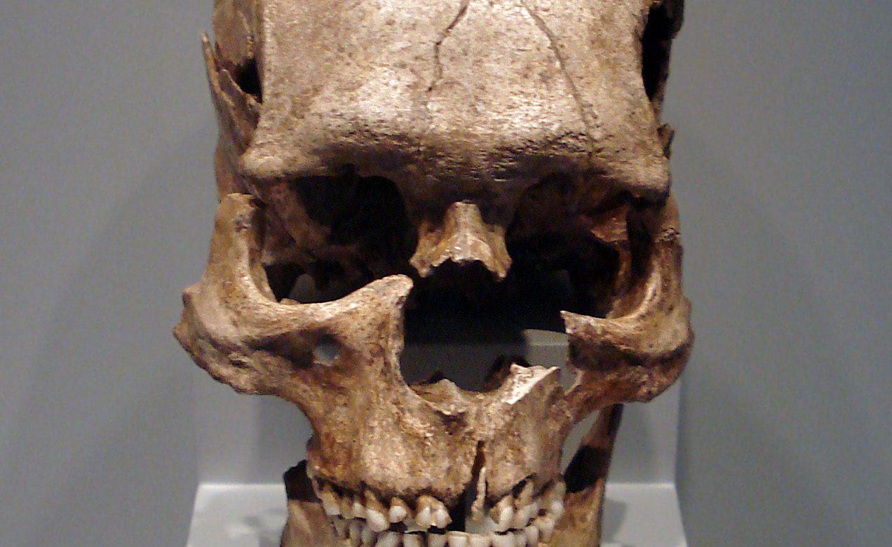 Le premier Homos Sapiens connu était Marocain !