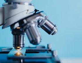 24 Millions de $ levés par l'entreprise de recherche médicale BiomX ltd. en Israël