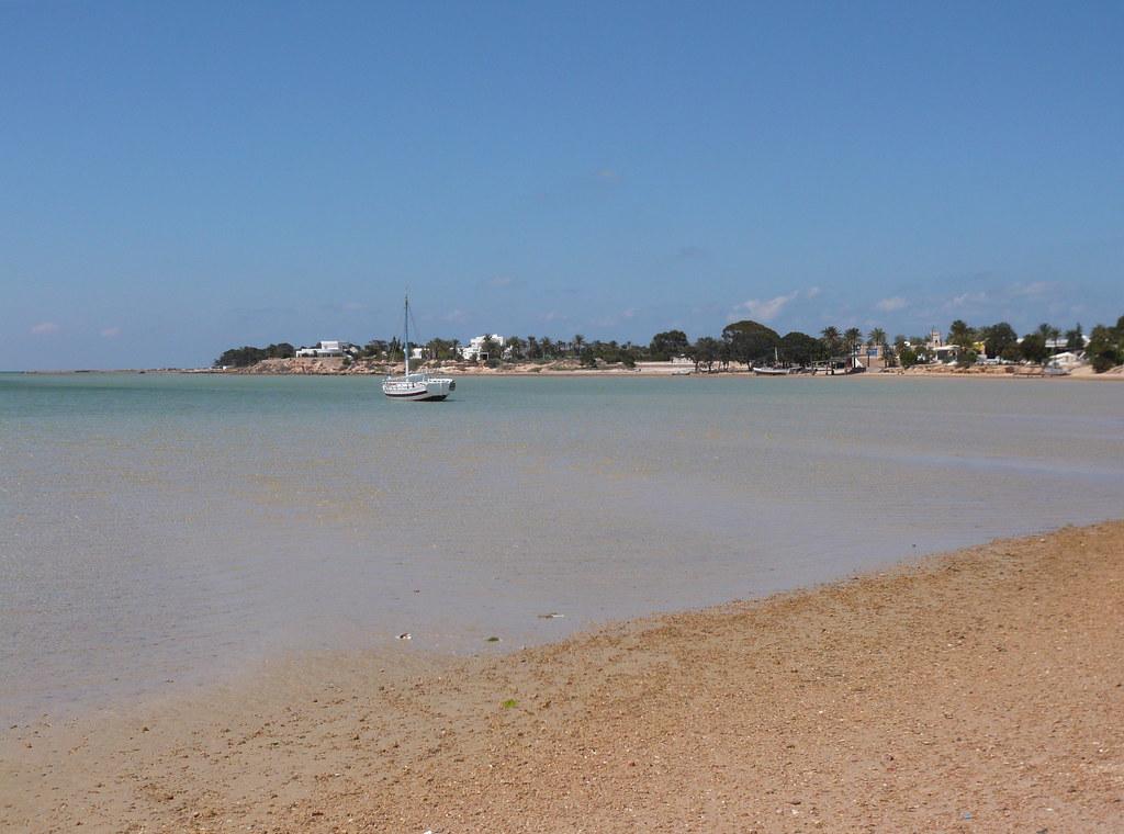 Tunisie : La Région Occitanie développe une coopération maritime axée sur la valorisation du crabe bleu