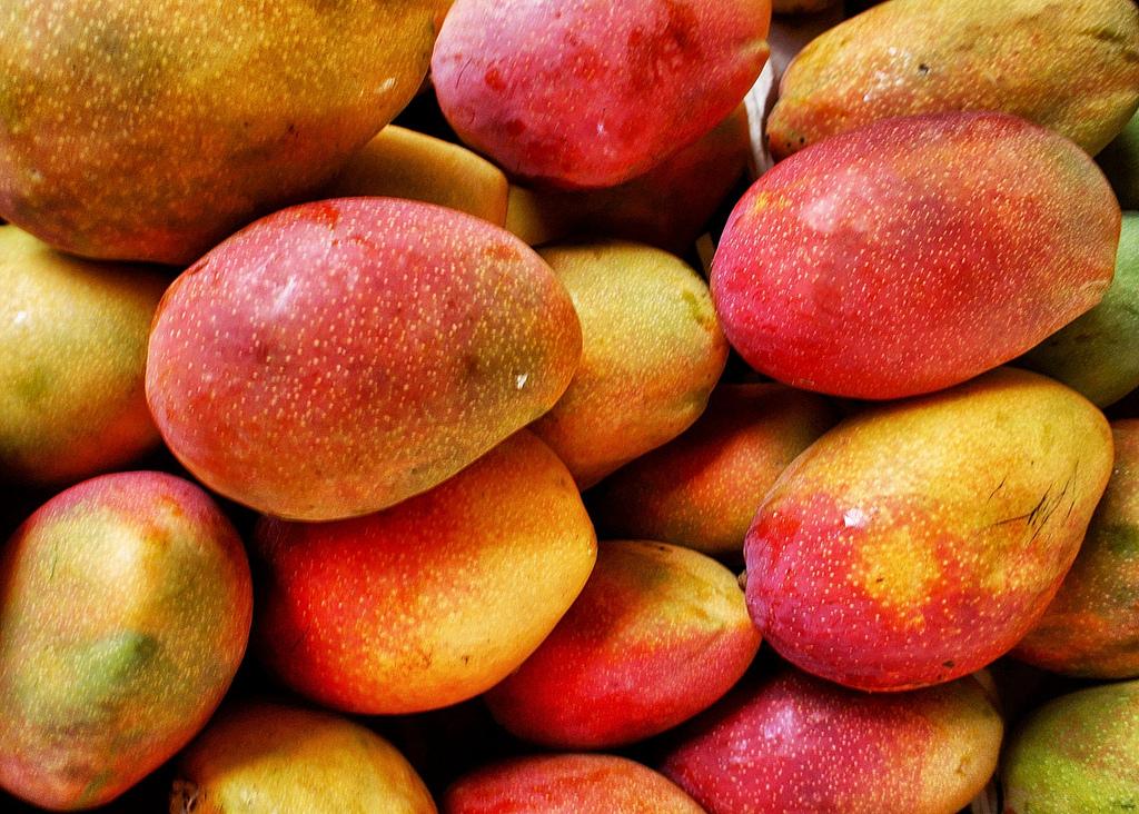 Israël veut augmenter la production de mangue au Cameroun