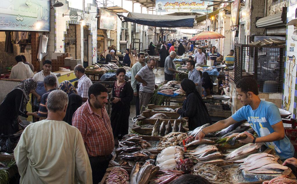 Egypte : des réformes pour pallier le déficit public