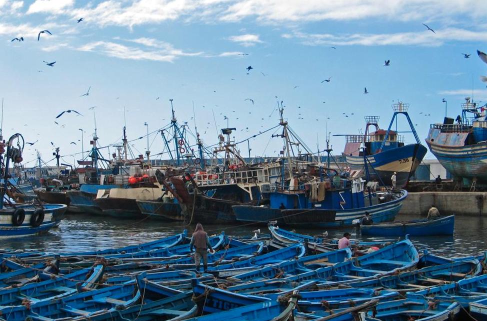 Maroc : Le royaume fait les yeux doux aux touristes chinois