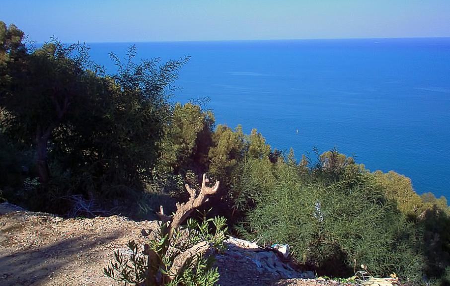 Tunisie : Le MedFund a alloué un financement de 900000€ pour la préservation de sa biodiversité marine dans les aires protégées du pays