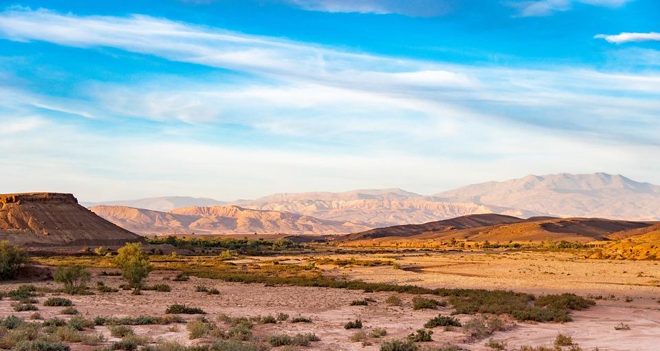 Le Maroc fait face à une grave sécheresse et débloque 22 millions de $ pour ses éleveurs