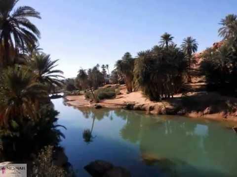 L'Algérie mise sur les oasis pour dynamiser de nouveau son tourisme