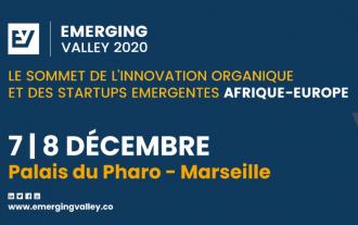 Open innovation workshop @EMERGING Valley