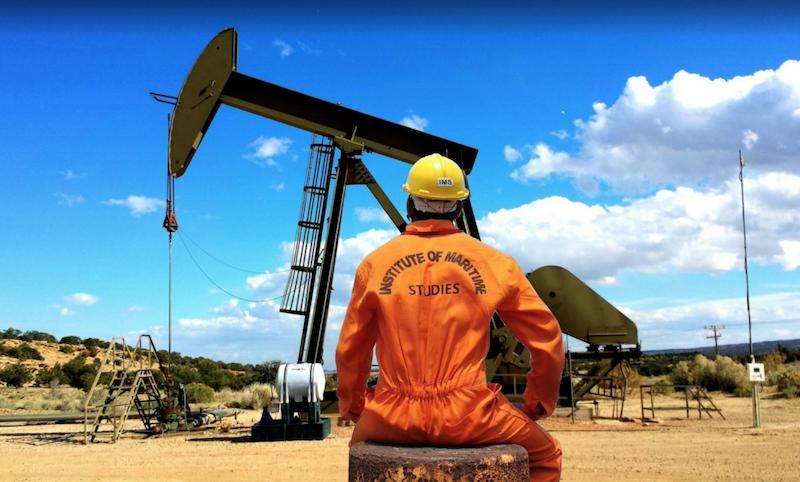 Les pays membres de l'Opep et de l'Opep+ vont réduire la production de pétrole de 9,7 millions de barils par jour à partir du 1ermai 2020 et jusqu'au30 juin 2020
