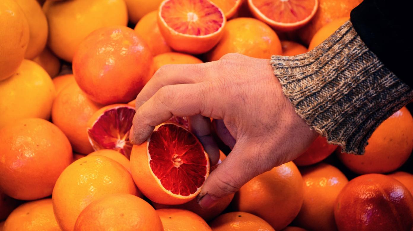 Tunisie : L'industrie fruiticole poursuit sa croissance avec une augmentation de 28%