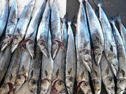 SeaSkin, l'entreprise marocain qui offre une nouvelle vie à la peau de poisson