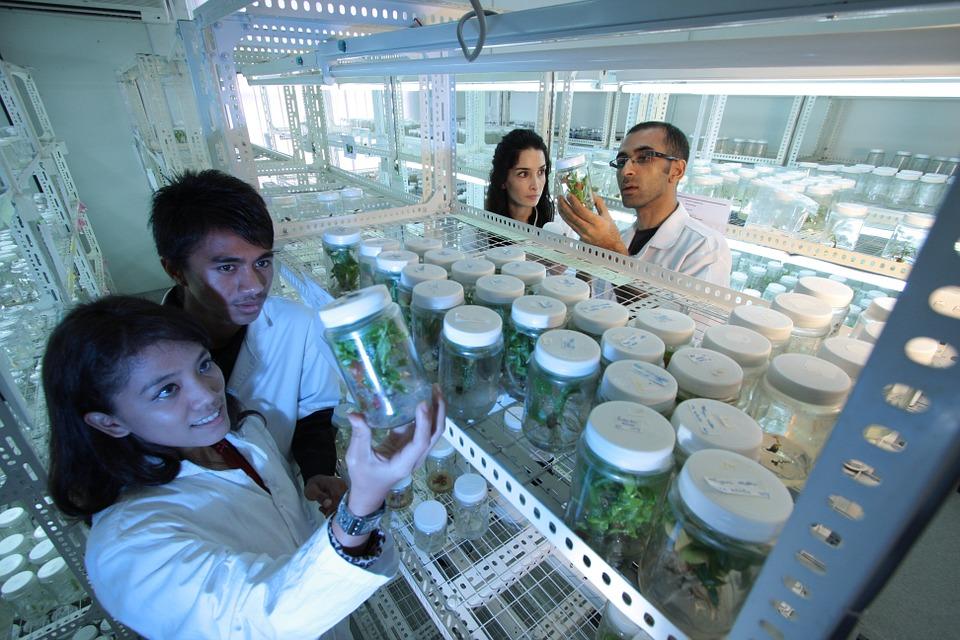 L'Algérie se lie à l'Espagne pour la recherche scientifique !