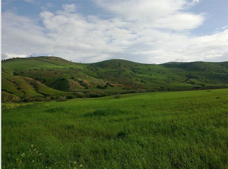 L'Algérie va mener un vaste projet agricole avec la Chine