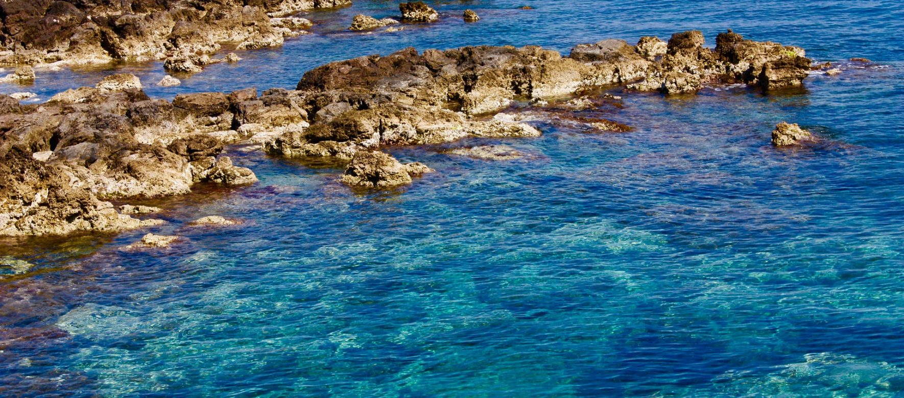 The Mediterranean Sea is threatened by mass tourism, according to the WWF 2