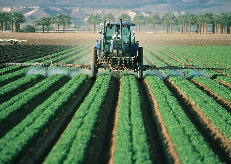 Les produits agricoles venus d'Egypte ne sont pas le bienvenu au Soudan ...