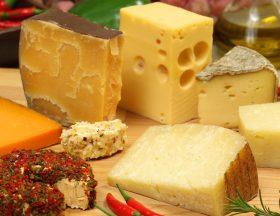 Maroc : Le groupe tunisien Land'Or va pouvoir construire son usine de fromage à Kenitra