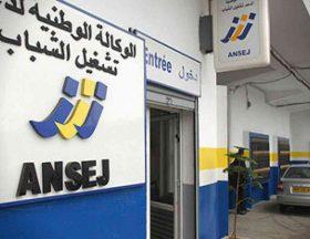 Algérie : L'agence pour l'emploi des jeunes va introduire des produits financiers conformes à la charia