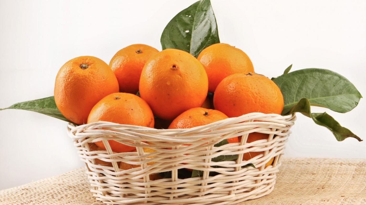 L'Egypte maintient sa place de premier exportateur mondial d'oranges devant l'Espagne 1