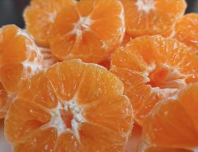 L'Egypte maintient sa place de premier exportateur mondial d'oranges devant l'Espagne