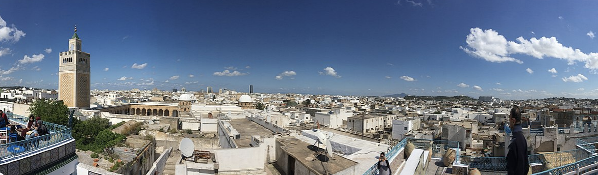 Tunisie : Les flux des investissements directs étrangers ont chuté de 23% depuis janvier 2020