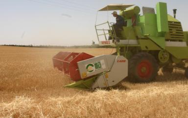 Agriculture : L'Algérie veut augmenter sa production nationale et réduire les importations