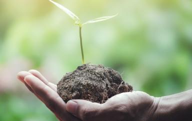 L'Egypte va bénéficier de 220 millions d'€ pour financer des projets écologiques par les PME