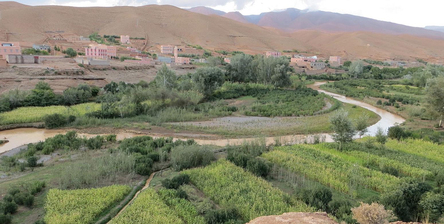 Maroc : Le marché des services agricoles s'apprête à connaître un important bouleversement