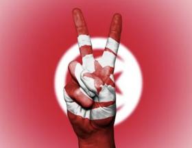 La Tunisie serait favorable à un renforcement des investissements français dans son pays