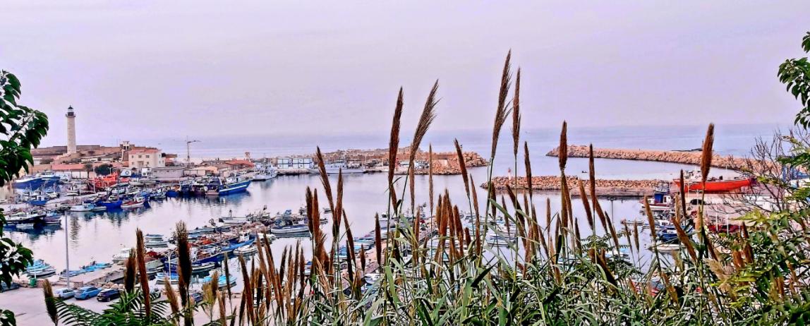 L'Algérie veut devenir un véritable hub régional maritime