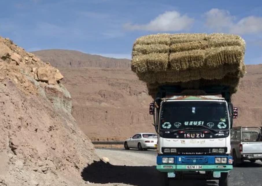 Le Maroc veut réduire de 25% le nombre de morts dans les accidents de circulation d'ici fin 2021 et de 50% à l'échéance 2026