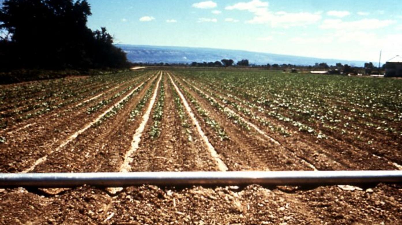 Maroc : Le fonds Amethis Mena II a acquis une part majoritaire dans la firme Magriser, spécialisée dans la distribution de matériels de micro-irrigation et systèmes de pompage solaire
