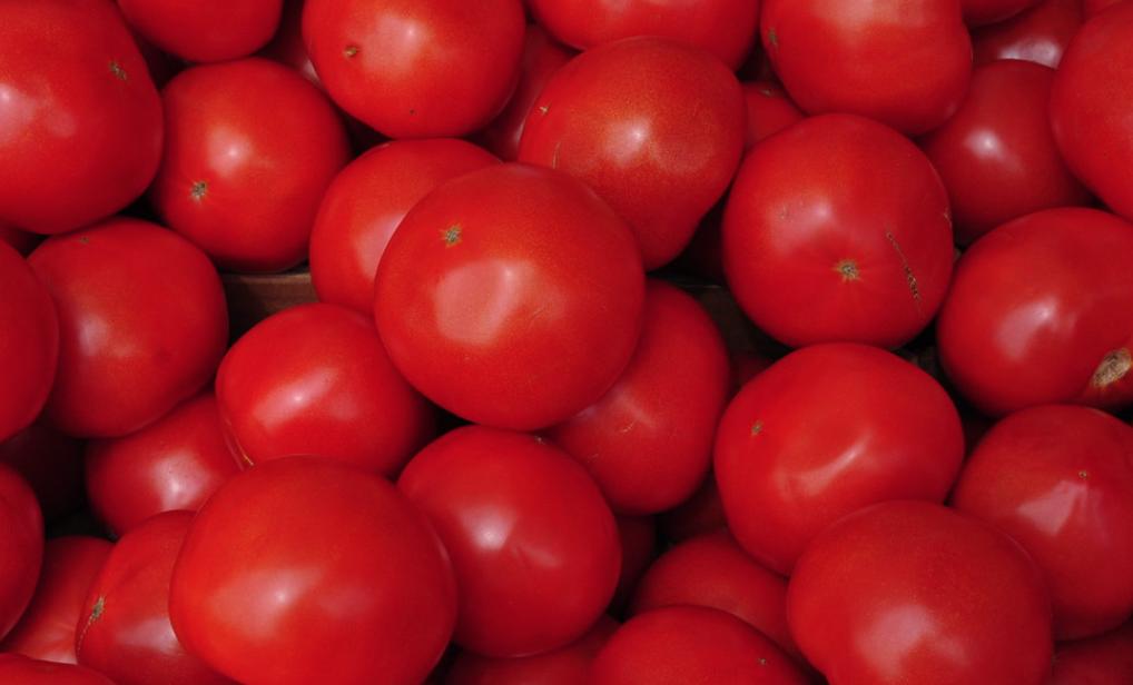 La Turquie a exporté du concentré de tomates vers 90 pays et a obtenu un revenu de 40,1 millions de dollars en 2021