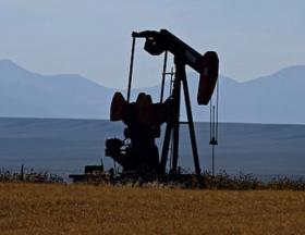 L'Egypte découvre encore un nouveau gisement de pétrole brut dans le désert occidental 1