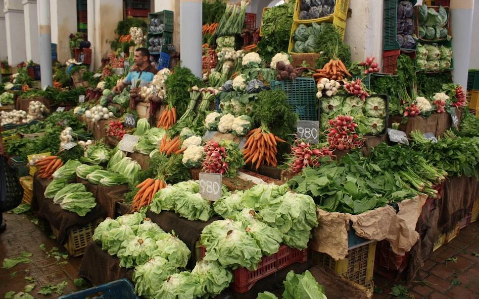 Tunisie : Le solde de sa balance commerciale alimentaire est resté négative sur les 5 premiers mois de 2021 1