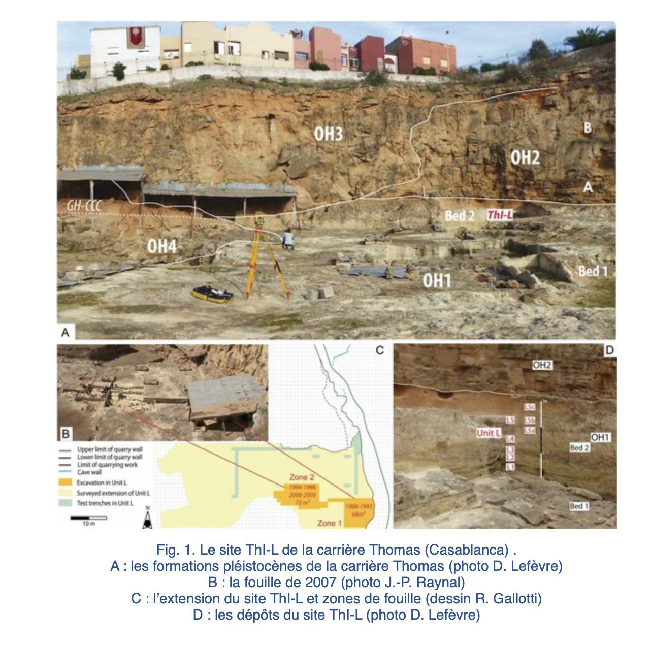 Maroc-Montpellier : L'Acheuléen le plus ancien site connu au Maroc a été découvert dans la région de Casablanca avec l'Université Paul-Valéry