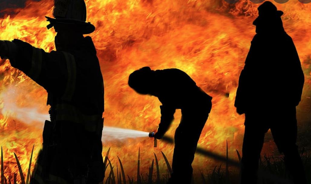 Le Liban fait face à des feux de forêt qui s'intensifient mais manque cruellement d'équipements et de matériel de lutte contre les incendies