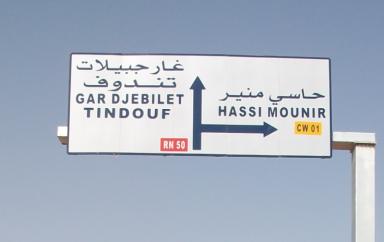 Algérie : Le projet de gisement de fer Gara Djebilet est estimé à 2 milliards $ avec la création de 3000 emplois et devrait alimenter l'industrie sidérurgique nationale
