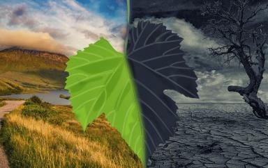 La Turquie se lance dans la bataille contre le changement climatique