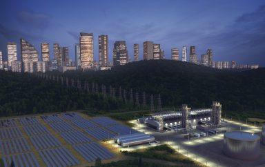 ecologie entreprises