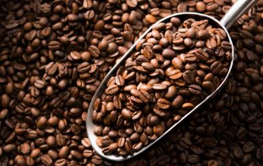 grains de cafe 1